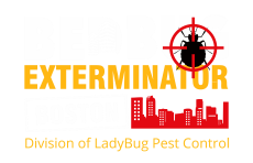 Reliable Bed Bug Exterminator in Boston